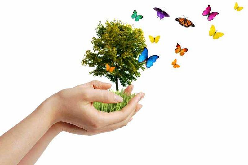 valstybės biologinės įvairovės strategija ir veiksmų planas